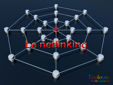 netlinking-toulouse-referencement